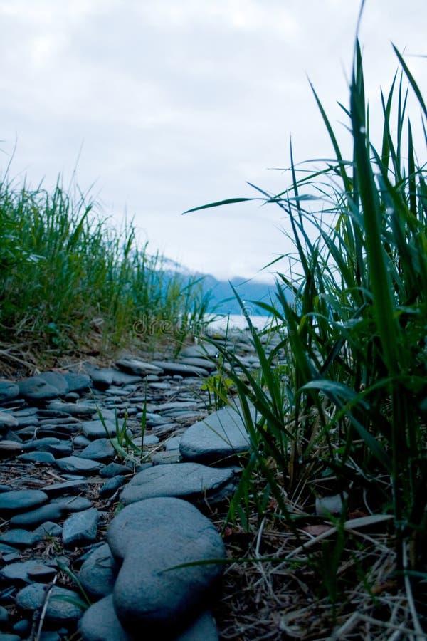 Πέτρινη πορεία μέσω της χλόης κοντά στην ακτή στοκ εικόνες