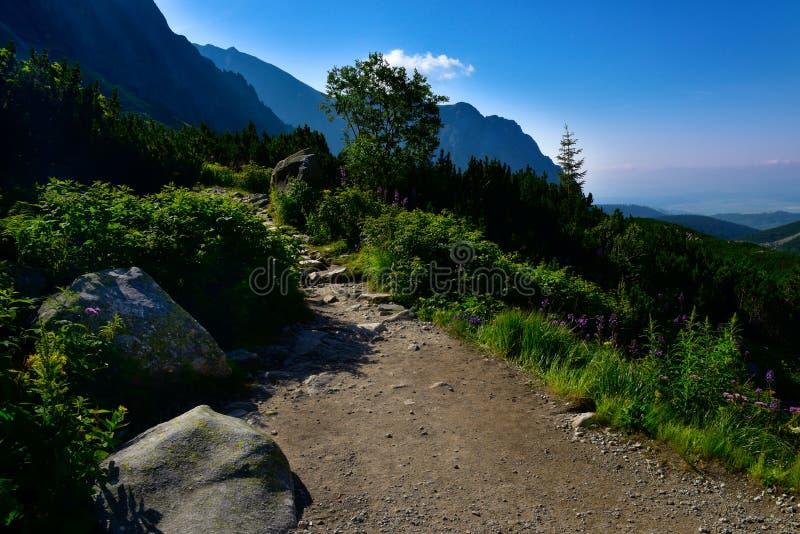 Πέτρινη πορεία στο βουνό Πάρκο βουνών Tatra στοκ φωτογραφία με δικαίωμα ελεύθερης χρήσης