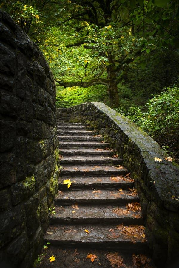 Πέτρινη σκάλα στα ξύλα στοκ φωτογραφίες με δικαίωμα ελεύθερης χρήσης