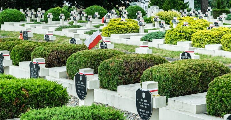 Πέτρινοι σταυροί του παλαιού στρατιωτικού νεκροταφείου στο νεκροταφείο Lychakiv σε Lviv στοκ φωτογραφία με δικαίωμα ελεύθερης χρήσης