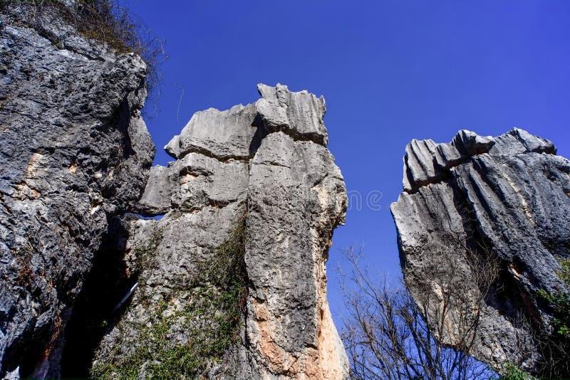Πέτρινος δασικός κόσμος Geopark της Ασίας Κίνα Yunnan στοκ εικόνες