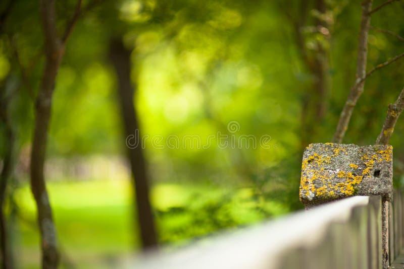 Πέτρινος φράκτης και θολωμένο δασικό υπόβαθρο στοκ φωτογραφίες με δικαίωμα ελεύθερης χρήσης