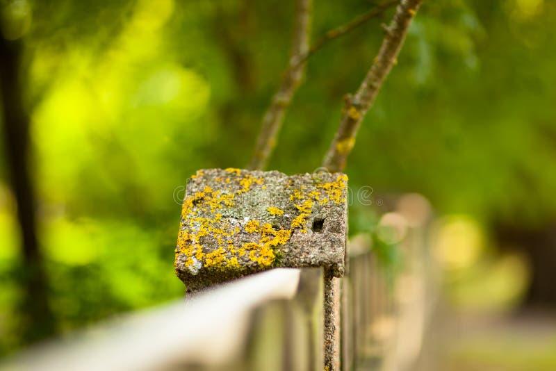 Πέτρινος φράκτης και θολωμένο δασικό υπόβαθρο στοκ φωτογραφία με δικαίωμα ελεύθερης χρήσης