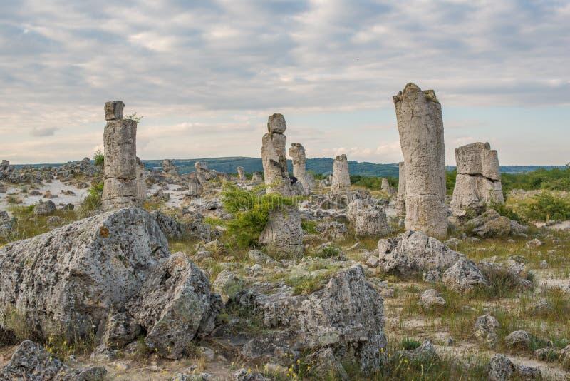 Πέτρινο δάσος (Pobiti Kamani) στη Βουλγαρία στοκ φωτογραφία με δικαίωμα ελεύθερης χρήσης