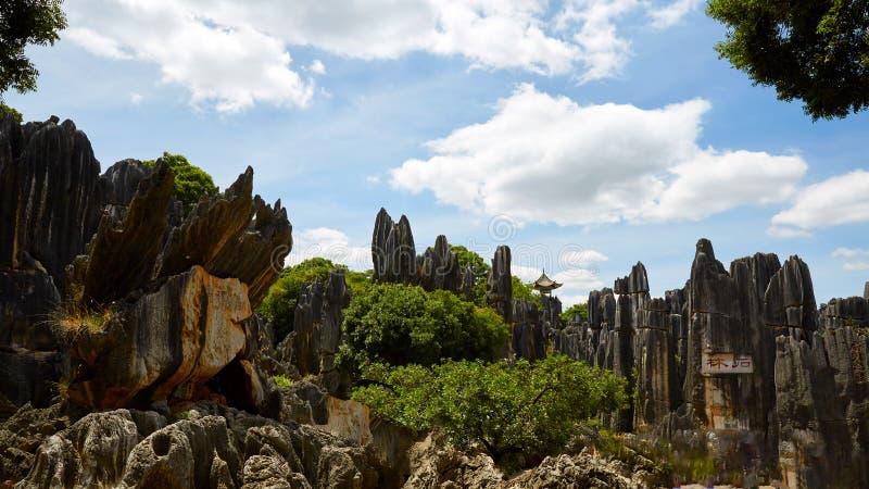 Πέτρινο δασικό παγκόσμιο γεωλογικό πάρκο Kunming, Yunnan, Κίνα στοκ εικόνες