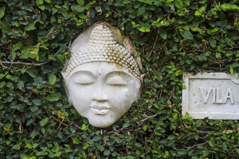 Πέτρινο πρόσωπο στοκ φωτογραφία με δικαίωμα ελεύθερης χρήσης