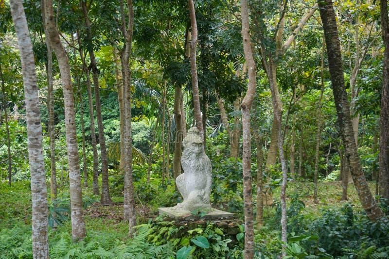 Πέτρινο ύφος του Μπαλί αγαλμάτων πιθήκων στοκ εικόνες