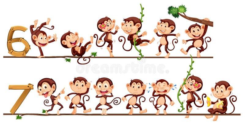 Πίθηκοι και αριθμός έξι και επτά διανυσματική απεικόνιση