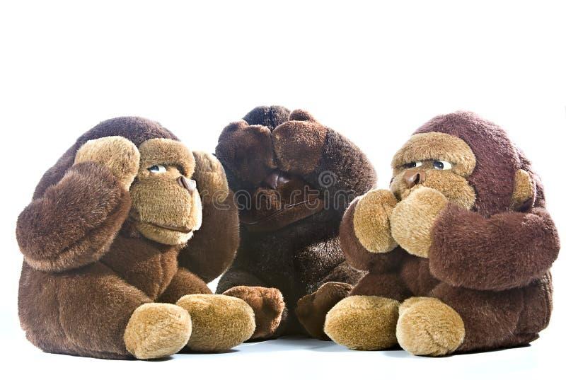πίθηκοι τρία στοκ φωτογραφίες