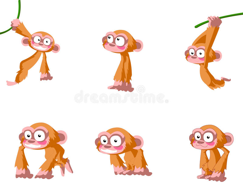 πίθηκοι ελεύθερη απεικόνιση δικαιώματος