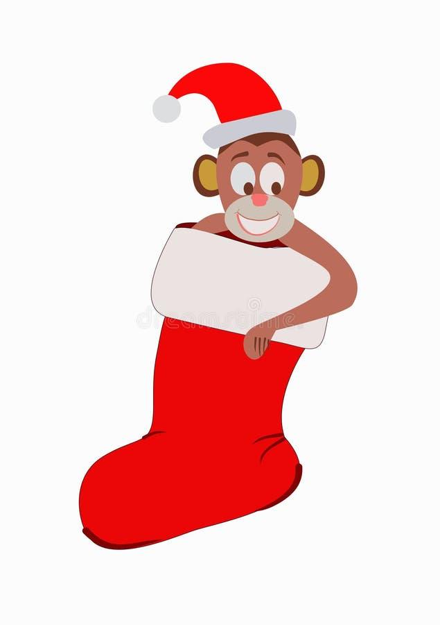 Πίθηκος, πίθηκος στην κάλτσα Χριστουγέννων στοκ εικόνες