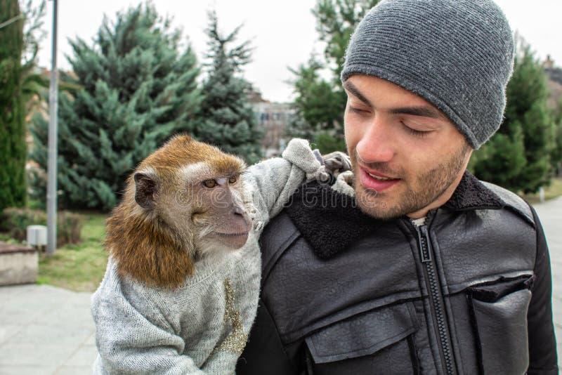 Πίθηκος σε ετοιμότητα ενός ατόμου Γεωργία Tbilisi στοκ φωτογραφίες