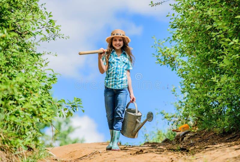 Πίνακας ελέγχου κηπουρικής άνοιξη λίγος αρωγός Ποτίζοντας τα εργαλεία που θα λύσουν τα ξηρά προβλήματα ναυπηγείων Μετακινούμενος  στοκ εικόνες με δικαίωμα ελεύθερης χρήσης