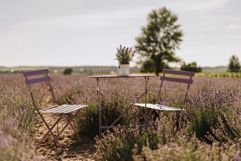 Πίνακας και έδρες υπαίθριοι στον ηλιόλουστο Lavender τομέα στοκ εικόνες