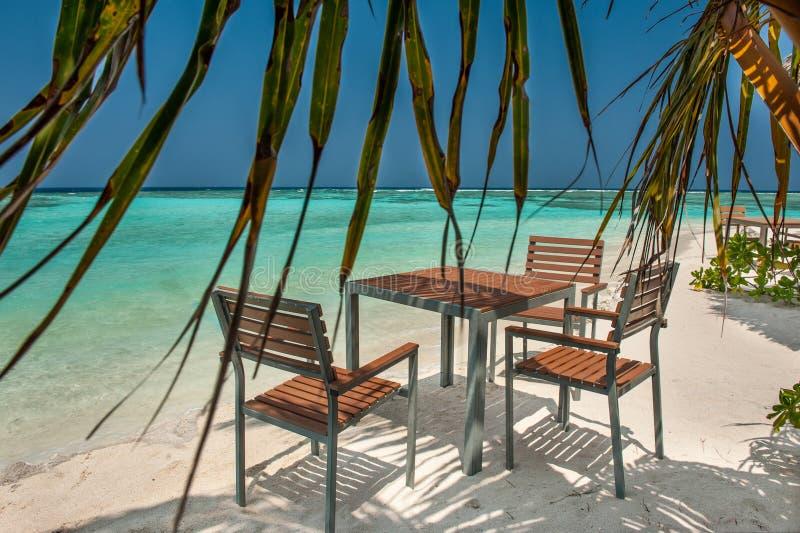 Πίνακας και καρέκλες στην ωκεάνια παραλία σε ένα τροπικό νησί στις Μαλδίβες Πίνακες και καρέκλες στη σκιά του φοίνικα σε ένα trop στοκ φωτογραφίες με δικαίωμα ελεύθερης χρήσης