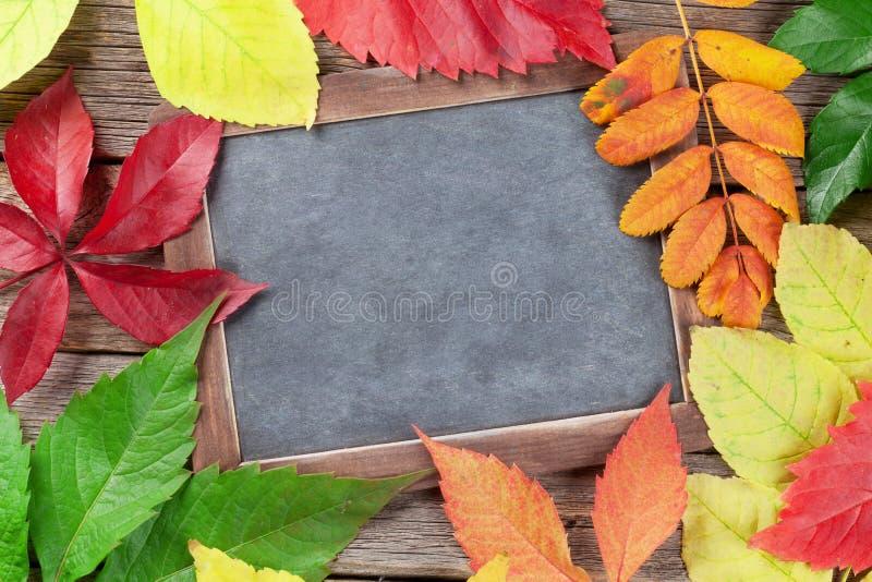 Πίνακας κιμωλίας και φύλλα φθινοπώρου στοκ φωτογραφίες