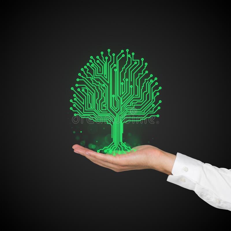 Πίνακας κυκλωμάτων με μορφή δέντρου στοκ φωτογραφία με δικαίωμα ελεύθερης χρήσης