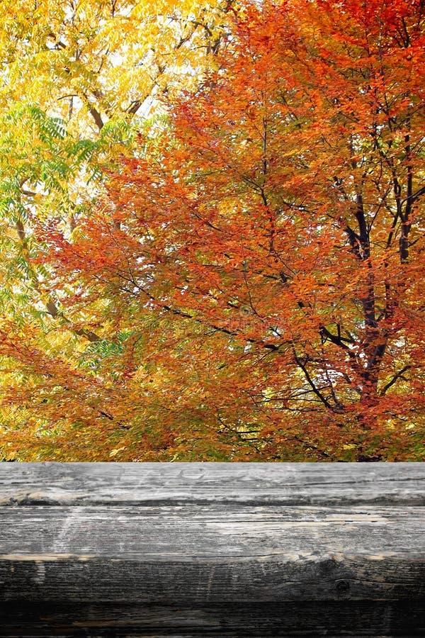 Πίνακας πικ-νίκ στο φθινόπωρο στοκ εικόνες