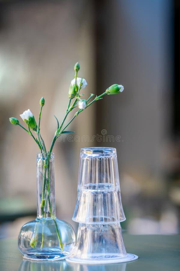 Πίνοντας γυαλιά και ένα πράσινο λουλούδι σε έναν υπαίθριο πίνακα Ακόμα ζωή με το ρηχό βάθος του τομέα στοκ φωτογραφίες