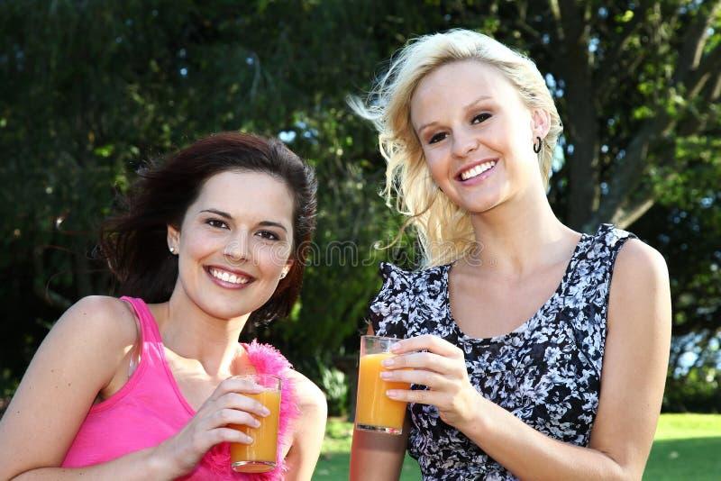 πίνοντας καλές υπαίθρια γυναίκες κρασιού στοκ εικόνες