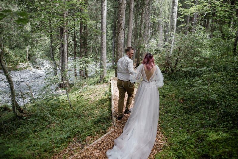 πίσω άποψη του όμορφου νέου γαμήλιου ζεύγους που περπατά στην πορεία βουνών στοκ φωτογραφία