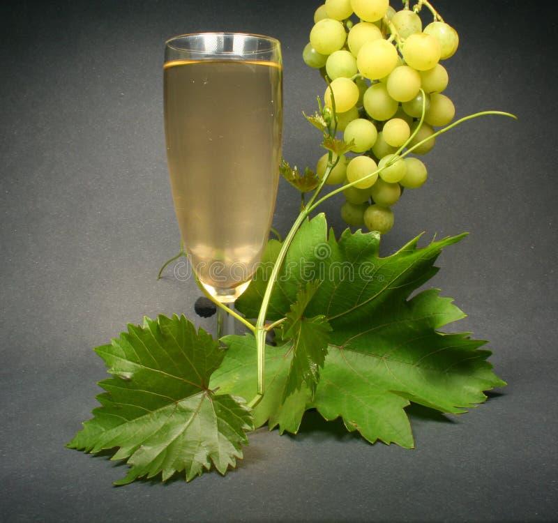 πίσω μαύρο άσπρο κρασί γυαλιού στοκ φωτογραφία με δικαίωμα ελεύθερης χρήσης