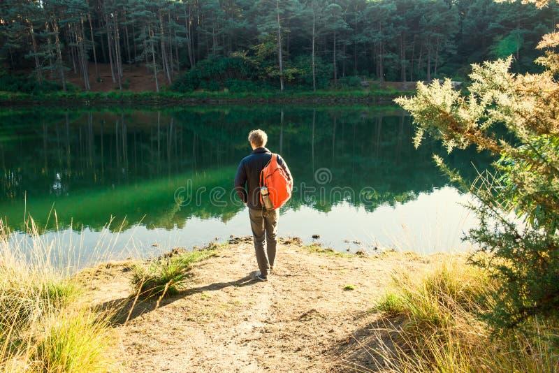 Πίσω νέος αρσενικός τουρίστας άποψης στα περιστασιακά ενδύματα με το σακίδιο πλάτης που στέκεται κοντά στη δασική λίμνη και που ε στοκ φωτογραφία