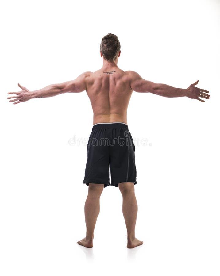 Πίσω του νέου γυμνοστήθου ατόμων μυών με τα όπλα στοκ φωτογραφία με δικαίωμα ελεύθερης χρήσης