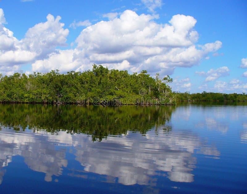 πίσω χώρα everglades στοκ εικόνες