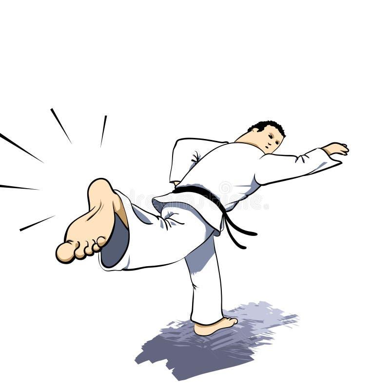 πίσω karate τεχνών πολεμική απερ απεικόνιση αποθεμάτων