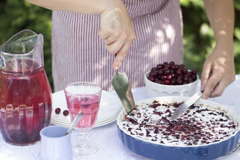 Πίτα κερασιών Clafoutis Τα χέρια γυναικών ` s κόβουν ένα σπιτικό κέικ στοκ εικόνα