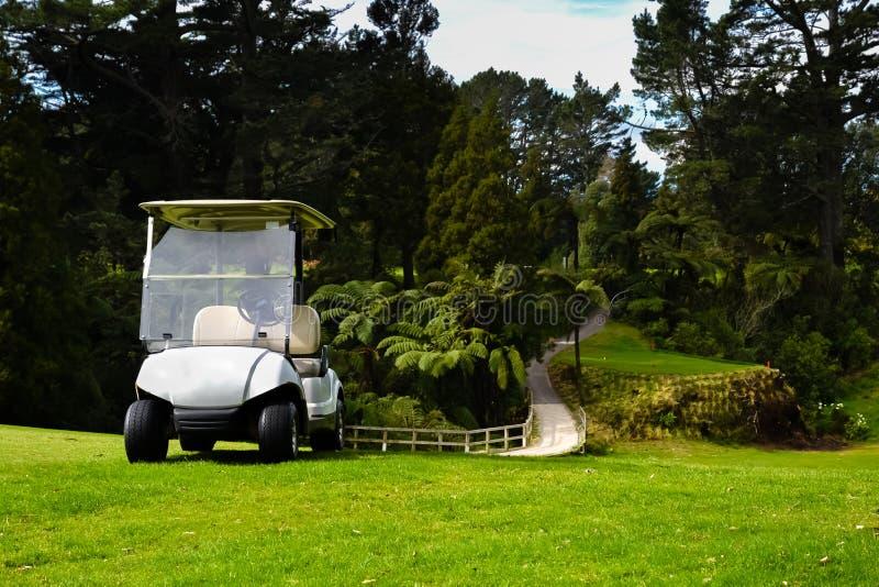 Παίκτες γκολφ Kart γηπέδων του γκολφ της Νέας Ζηλανδίας από τη γέφυρα στοκ φωτογραφία με δικαίωμα ελεύθερης χρήσης