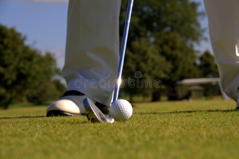 Παίκτης γκολφ που εξετάζει τη σφαίρα στοκ εικόνες
