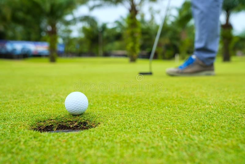 Παίκτης γκολφ που υποβάλλει τη σφαίρα γκολφ στο πράσινο γκολφ, φλόγα φακών στον καθορισμένο χρόνο βραδιού ήλιων, υπέρ σφαίρα γκολ στοκ εικόνα
