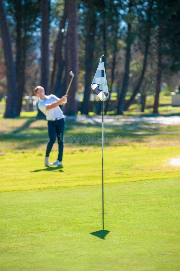 Παίκτης γκολφ που παίζει ένα τσιπ που πυροβολείται επάνω στο πράσινο στοκ εικόνες