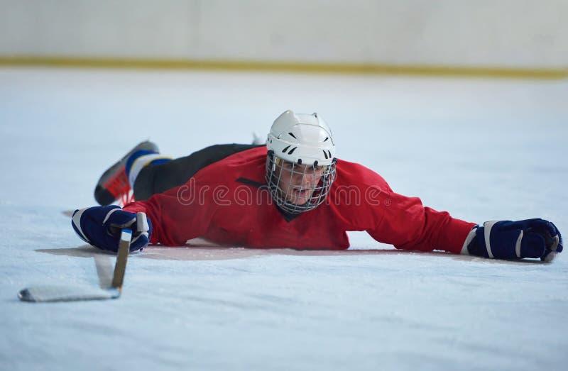 Παίκτης χόκεϋ πάγου στη δράση στοκ φωτογραφία με δικαίωμα ελεύθερης χρήσης