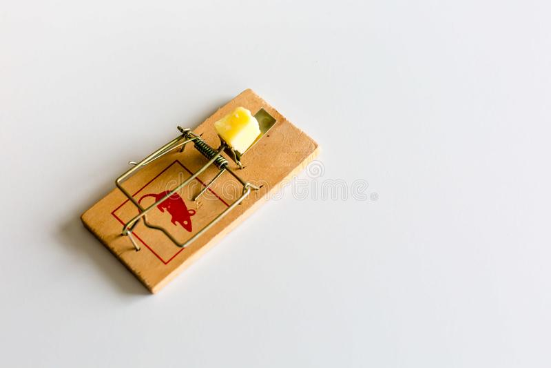 Παγίδα ποντικιών ή αρουραίων με το τυρί στοκ εικόνα