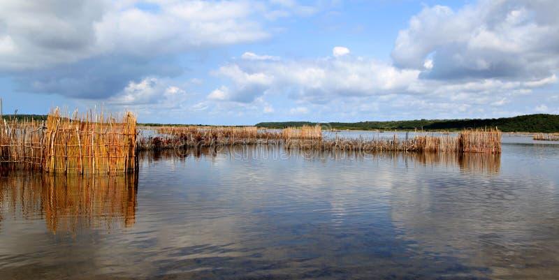 Παγίδες ψαριών των Τόνγκα στοκ εικόνες με δικαίωμα ελεύθερης χρήσης