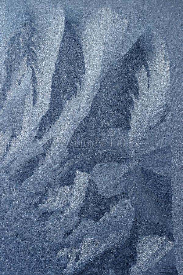 παγετός στοκ εικόνες