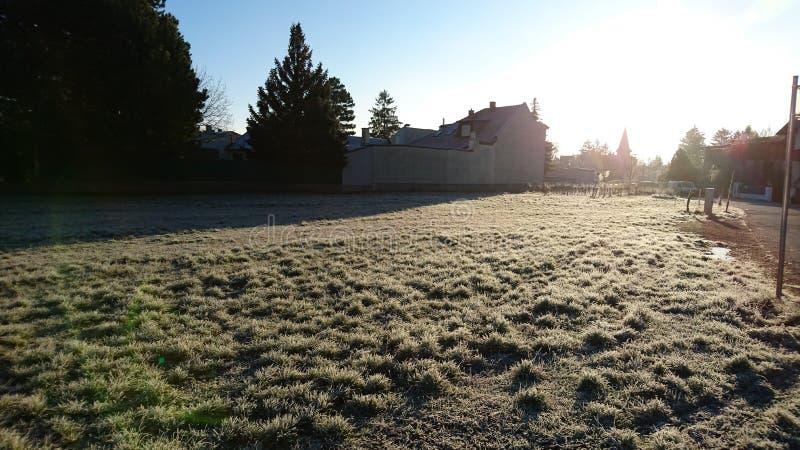 Παγετός Hoar το πρωί στοκ φωτογραφίες