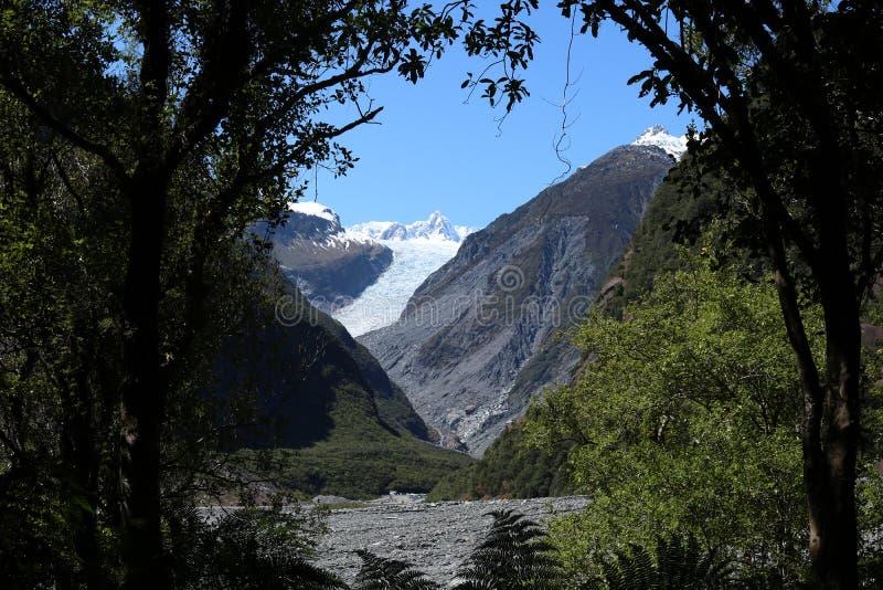 Παγετώνας αλεπούδων, Te Moeka ο Tuawe μέσω των δέντρων NZ στοκ φωτογραφία με δικαίωμα ελεύθερης χρήσης