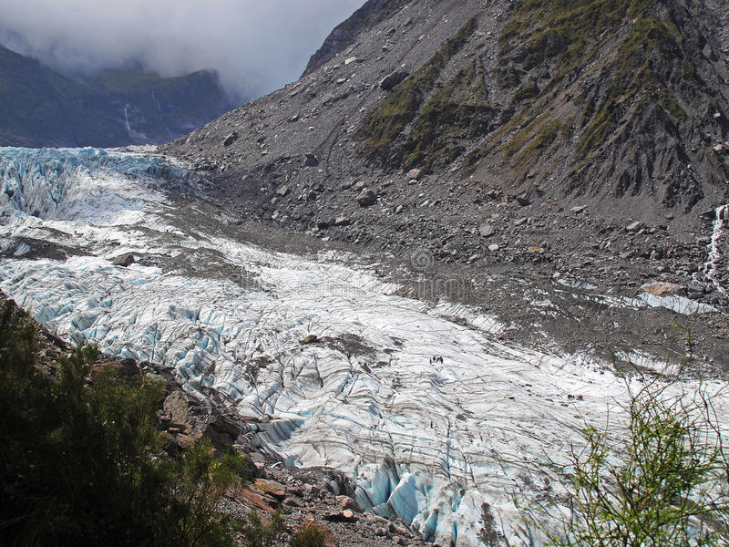 Παγετώνας αλεπούδων στοκ φωτογραφίες