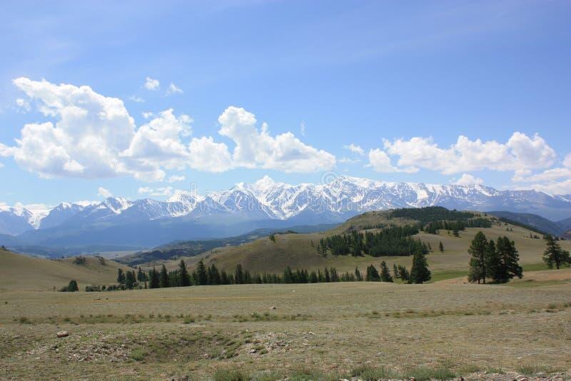 Παγετώνας Aktru στα βουνά Altai στοκ φωτογραφίες