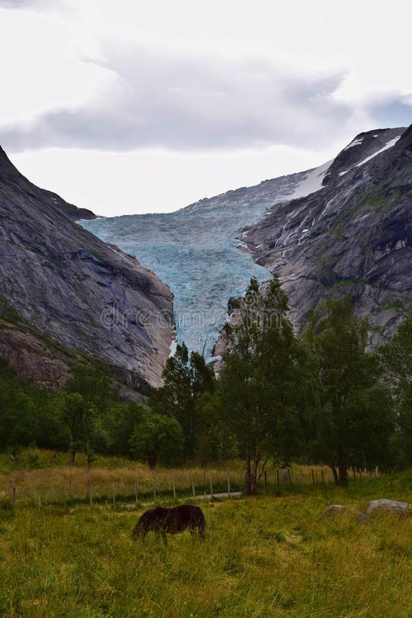 Παγετώνας Briksdal και ένα πόνι, Νορβηγία στοκ φωτογραφία με δικαίωμα ελεύθερης χρήσης