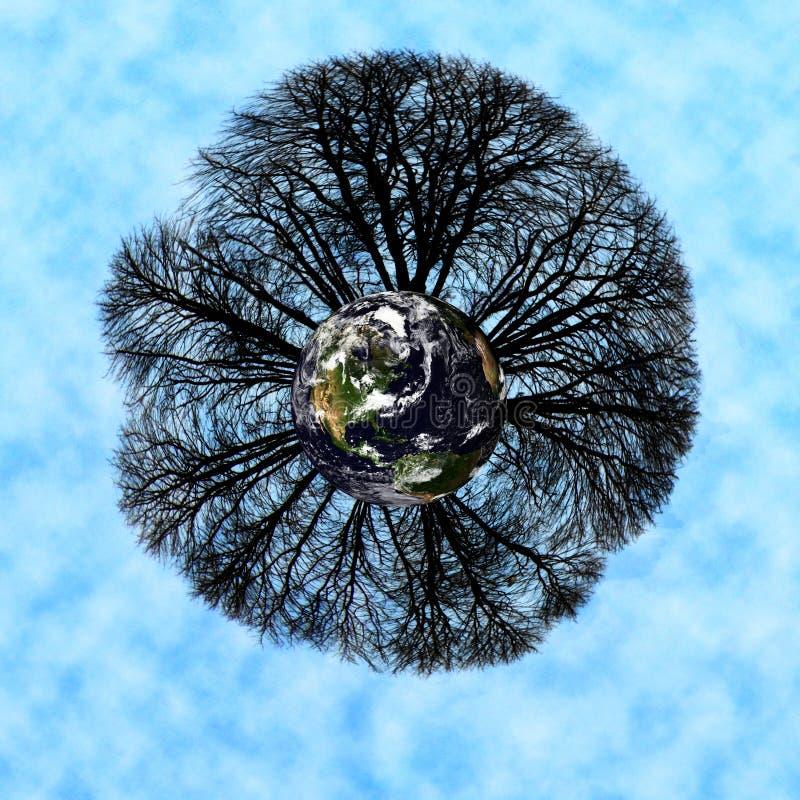 Παγκόσμια δέντρα Στοκ Εικόνες