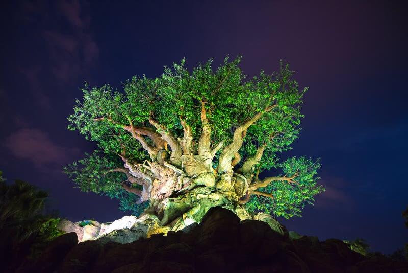 Παγκόσμιο δέντρο της Disney του ζωικού βασίλειου ζωής στοκ εικόνες