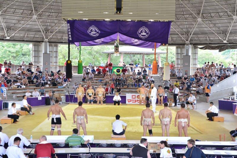 Παγκόσμιο πρωτάθλημα 2015 σούμο στην ΟΖΑΚΑ - την ΙΑΠΩΝΙΑ στοκ εικόνες με δικαίωμα ελεύθερης χρήσης