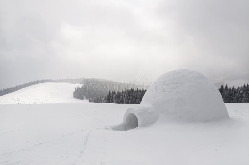 Παγοκαλύβα χιονιού στοκ εικόνα