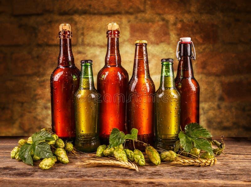 Παγωμένα μπουκάλια της μπύρας στοκ φωτογραφία