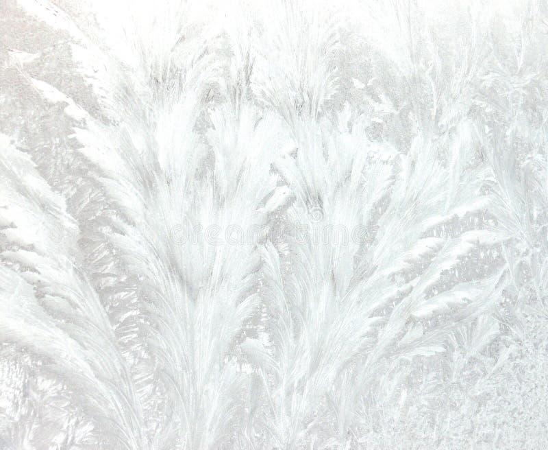 παγωμένα πρότυπα στοκ εικόνες